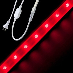 Red Driverless 5050 LED Strip Light