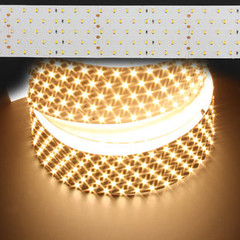 Warm White PRO-Line 2835 165W LED Strip Light